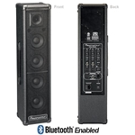 Powerwerks PW100BT 100 W Portable PA System with Bluetooth